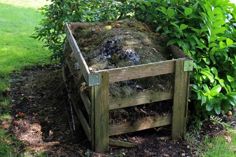 Composting from Kitchen Waste.