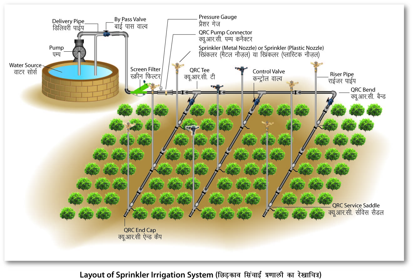 Drip Irrigation Vs Sprinkler Irrigation Farming Agri Farming