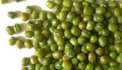 moong bean seeds
