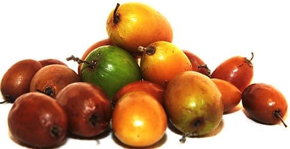 Health Benefits of Ber Fruit