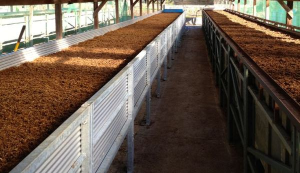 commercial-production-line-of-vermicompost
