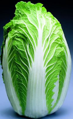 Health Benefits of Chinese Cabbage.