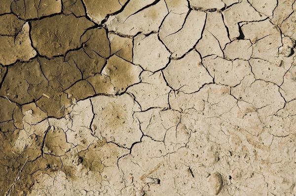 Arid Soil.