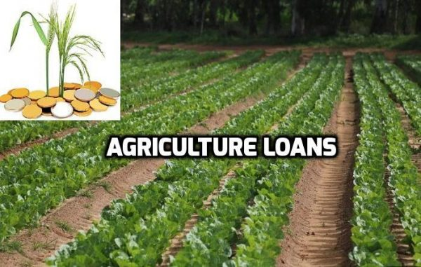 agriculture finance in india Agriculture consultancy specialists, india high end finance corporation and services for rural development, watershed development, livelihood promotion at afcindiaorgin.
