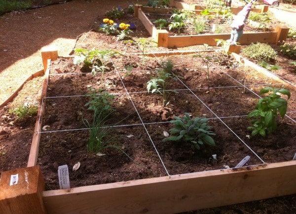 Square Foot Gardening Material (Pic source: Flicker).