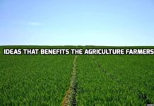 Smart Ideas that Benefits the Agriculture Farmers