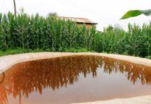 Rainwater Harvesting In Agriculture.