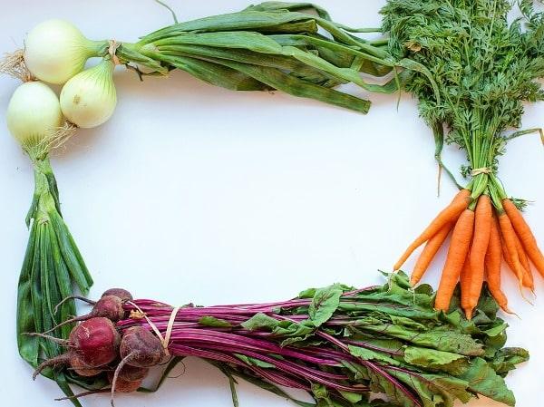 Fresh Harvested Vegetables.