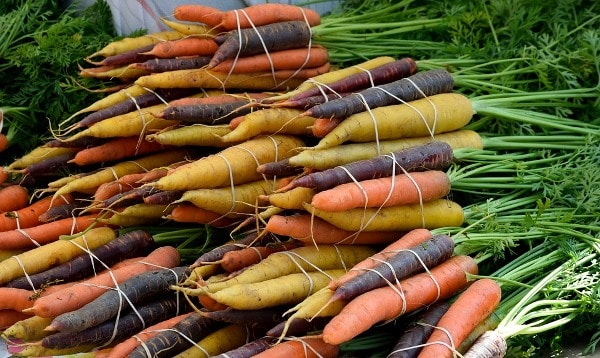 Graded and Sorted Carrots.