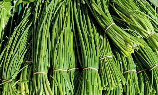 Harvested Chives.