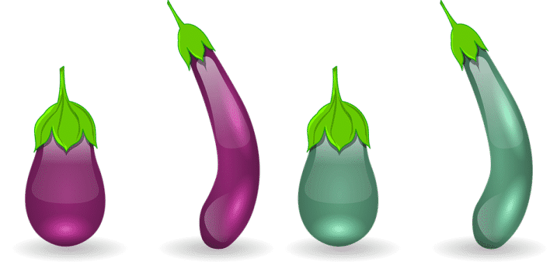 Typical Types of Brinjal.