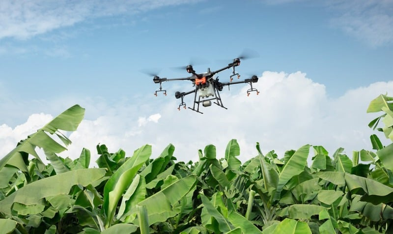 Challenges in Smart Farming.