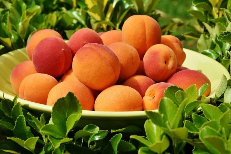 Organic Apricots.