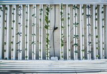 Profitable Crops for Vertical Farming.