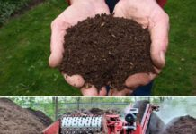 What is Compost, Types of Compost.
