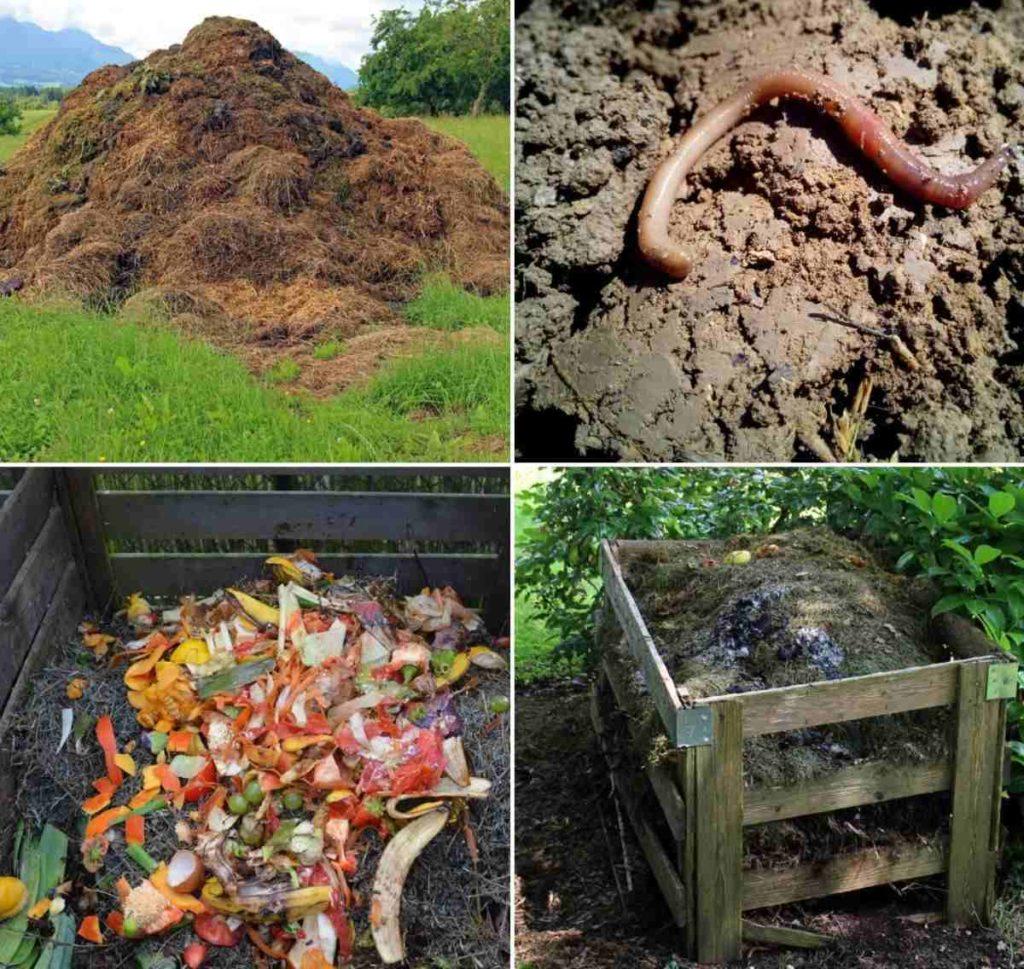 Compost Process.