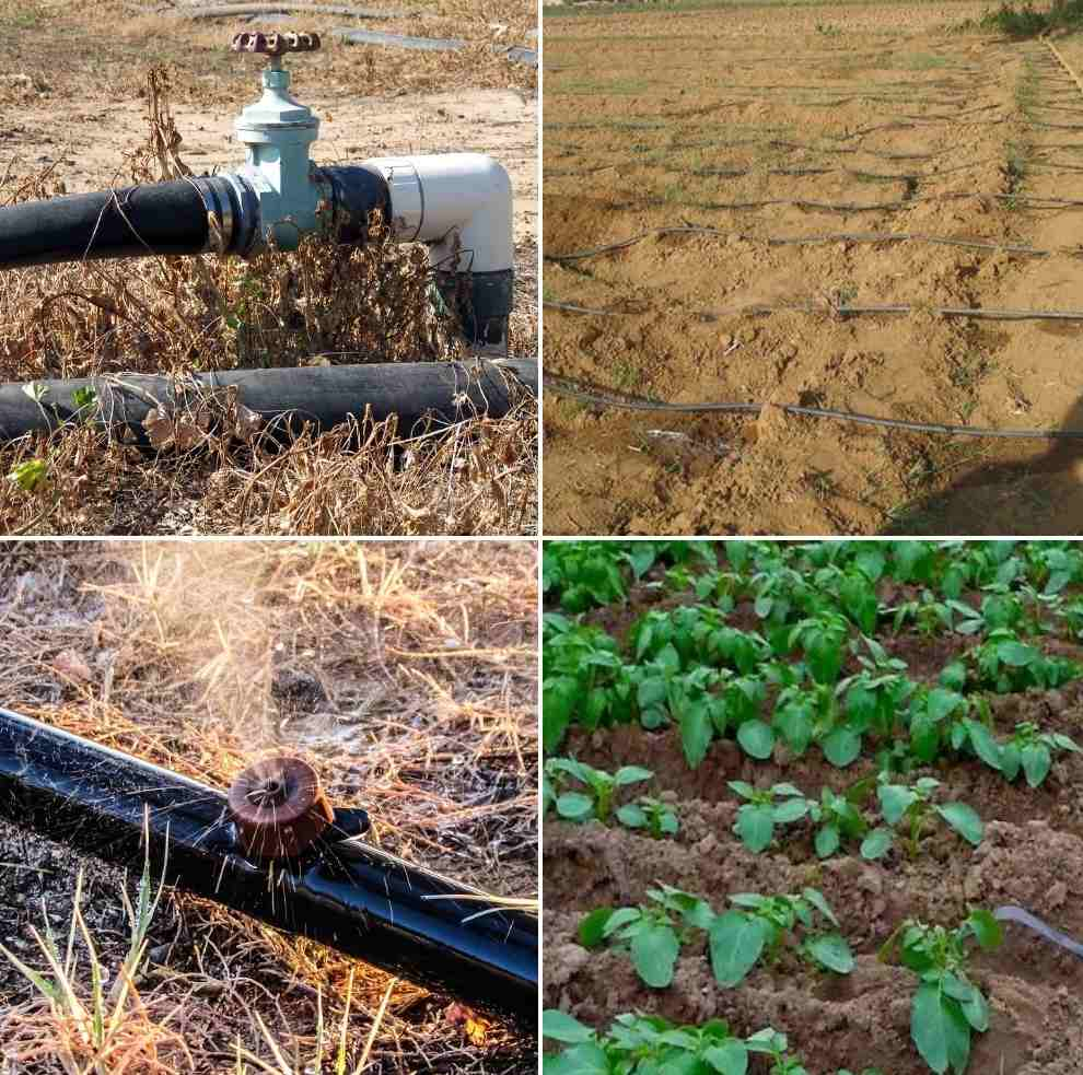 Micro-Irrigation System Benefits, Components.