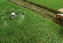 Role of AI and IoT in Agriculture.