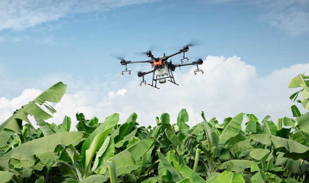 Role of AI and IoT in Farming.