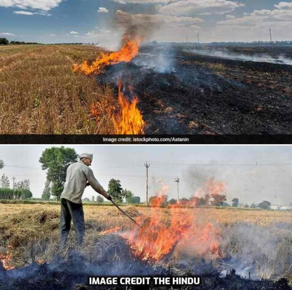 Disadvantages of Stubble Burning in India.