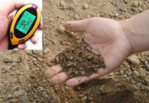How To Find Soil Health.