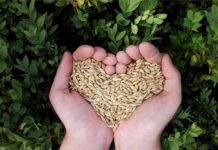 Purpose of Agri Farming.