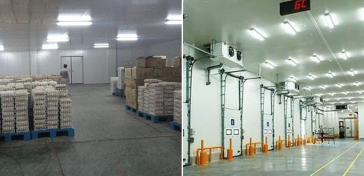 Scope for cold storage in India.