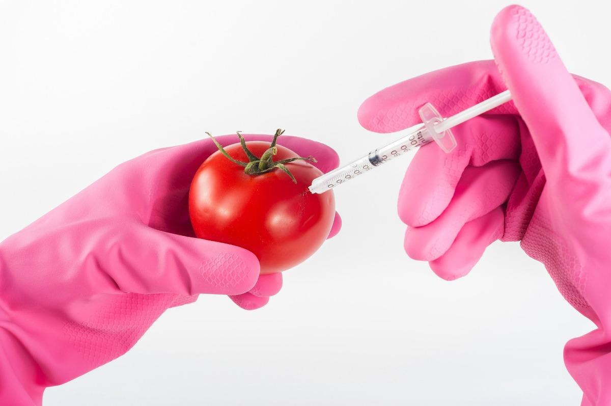Agricultural Biotechnology Benefits, and Applications | Agri Farming